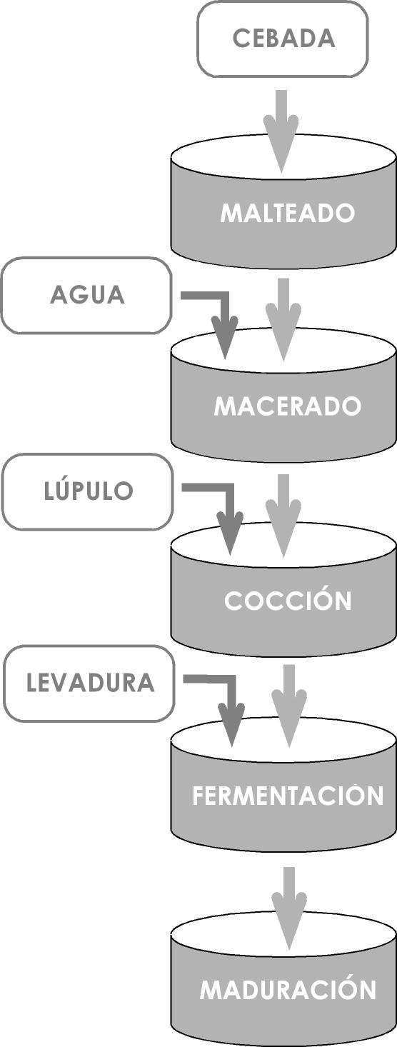 esquema_fases_elaboracion_cerveza
