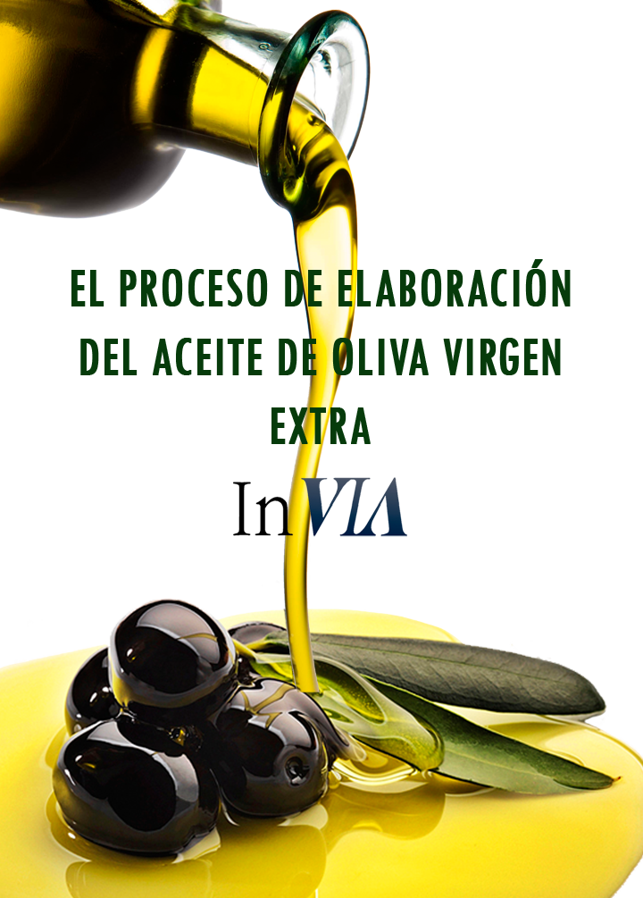 maquinas-hacer-aceite-oliva-virgen-extra
